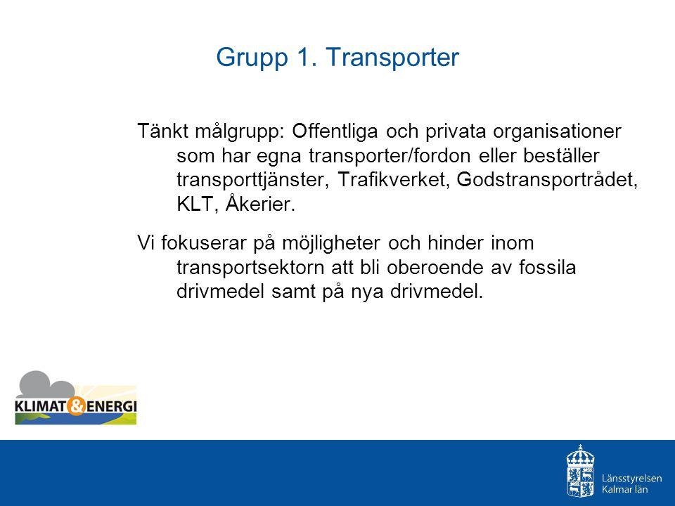 Grupp 1. Transporter Tänkt målgrupp: Offentliga och privata organisationer som har egna transporter/fordon eller beställer transporttjänster, Trafikve