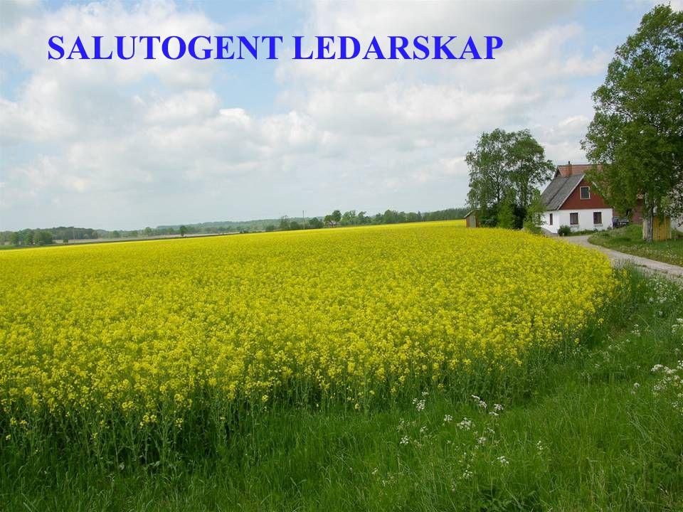 SALUTOGENT LEDARSKAP