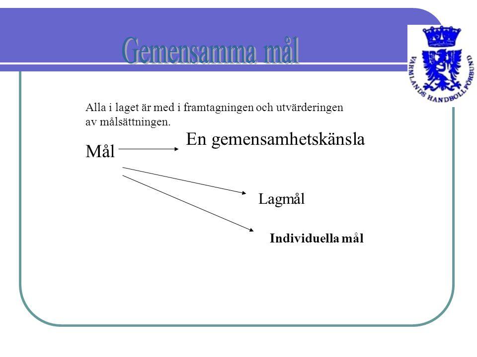 1.Gemensamma/individuella mål/visioner Kommunikation 2 3.