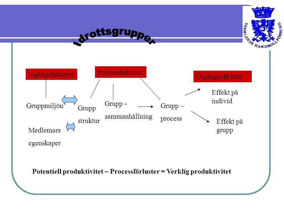 Ingångsfaktorer Processfaktorer Utgångseffekter Gruppmiljön Medlemars egenskaper Grupp - sammanhållning Grupp struktur Grupp – process Effekt på indiv