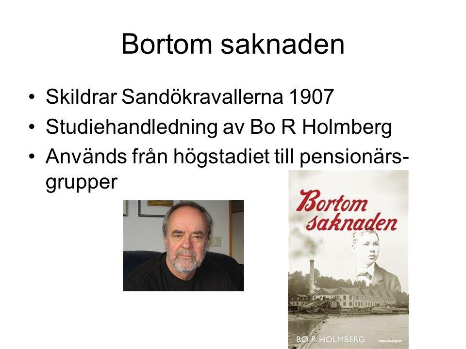 Bortom saknaden Skildrar Sandökravallerna 1907 Studiehandledning av Bo R Holmberg Används från högstadiet till pensionärs- grupper