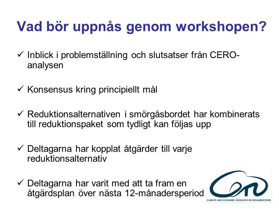 Vad bör uppnås genom workshopen? Inblick i problemställning och slutsatser från CERO- analysen Konsensus kring principiellt mål Reduktionsalternativen