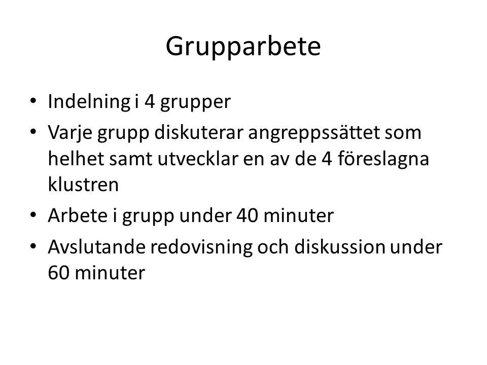 Grupparbete Indelning i 4 grupper Varje grupp diskuterar angreppssättet som helhet samt utvecklar en av de 4 föreslagna klustren Arbete i grupp under 40 minuter Avslutande redovisning och diskussion under 60 minuter