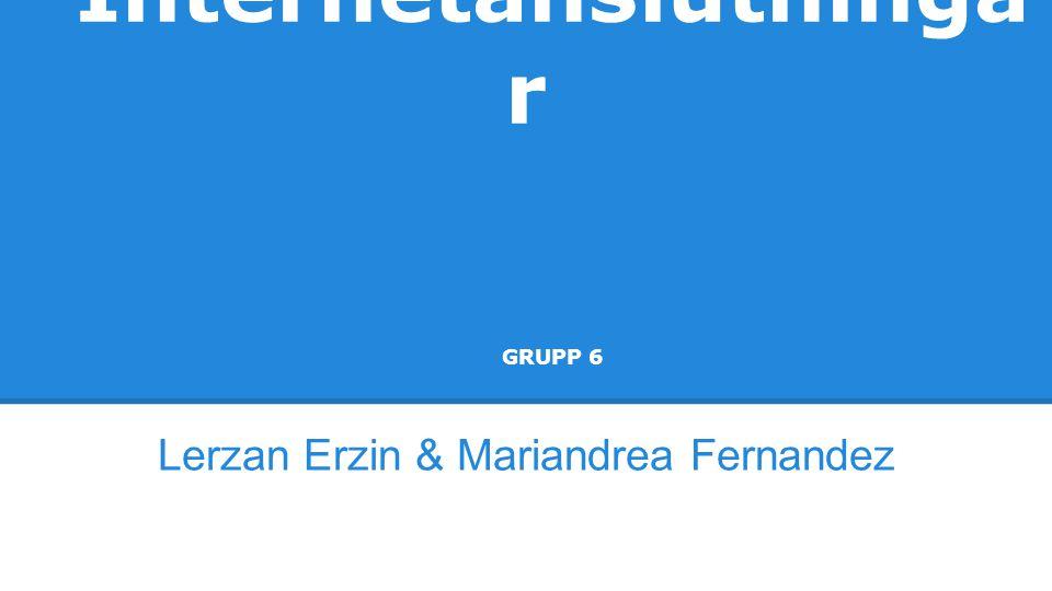 Internetanslutninga r GRUPP 6 Lerzan Erzin & Mariandrea Fernandez