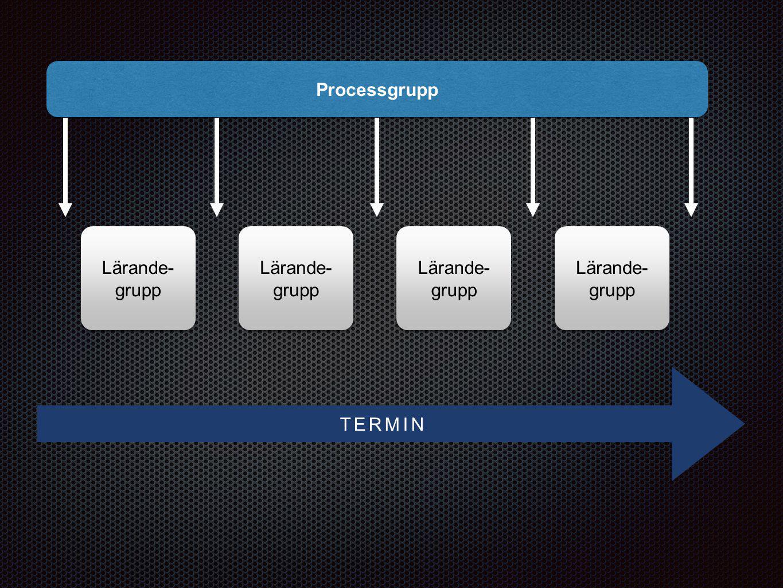 Lärande- grupp Lärande- grupp Lärande- grupp Lärande- grupp Lärande- grupp Lärande- grupp Lärande- grupp Lärande- grupp Processgrupp TERMIN