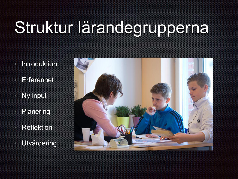 Struktur lärandegrupperna Introduktion Erfarenhet Ny input Planering Reflektion Utvärdering