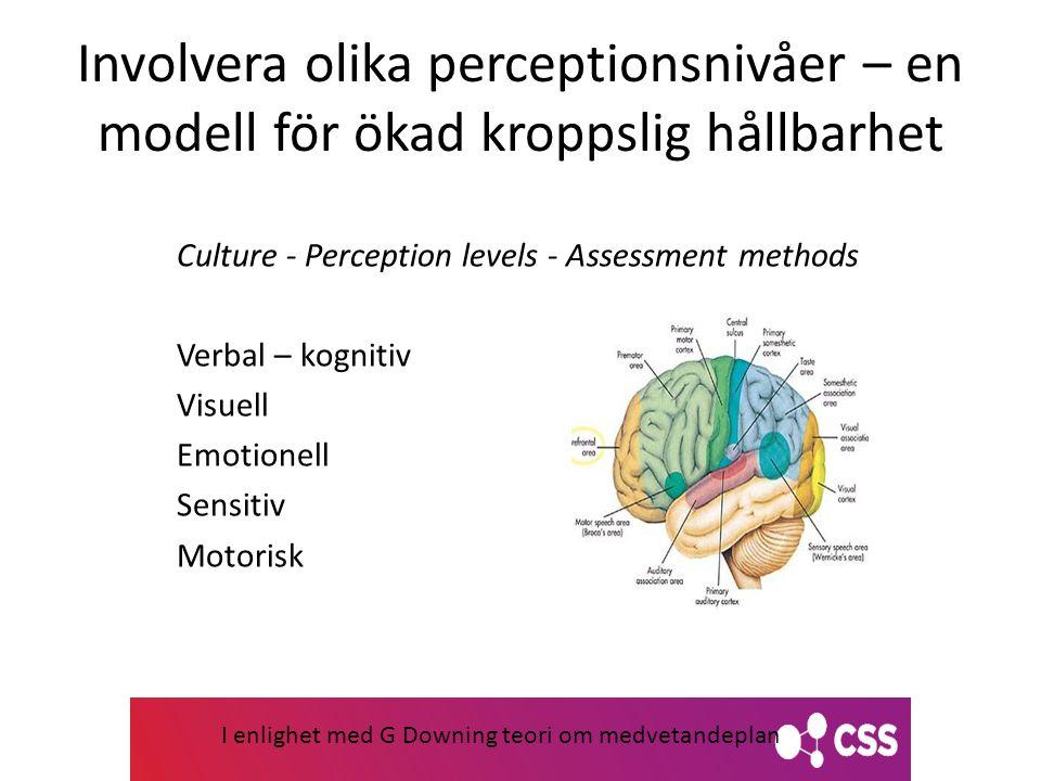 Involvera olika perceptionsnivåer – en modell för ökad kroppslig hållbarhet Culture - Perception levels - Assessment methods Verbal – kognitiv Visuell