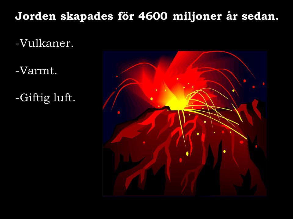 Jorden skapades för 4600 miljoner år sedan. -Vulkaner. -Varmt. -Giftig luft.