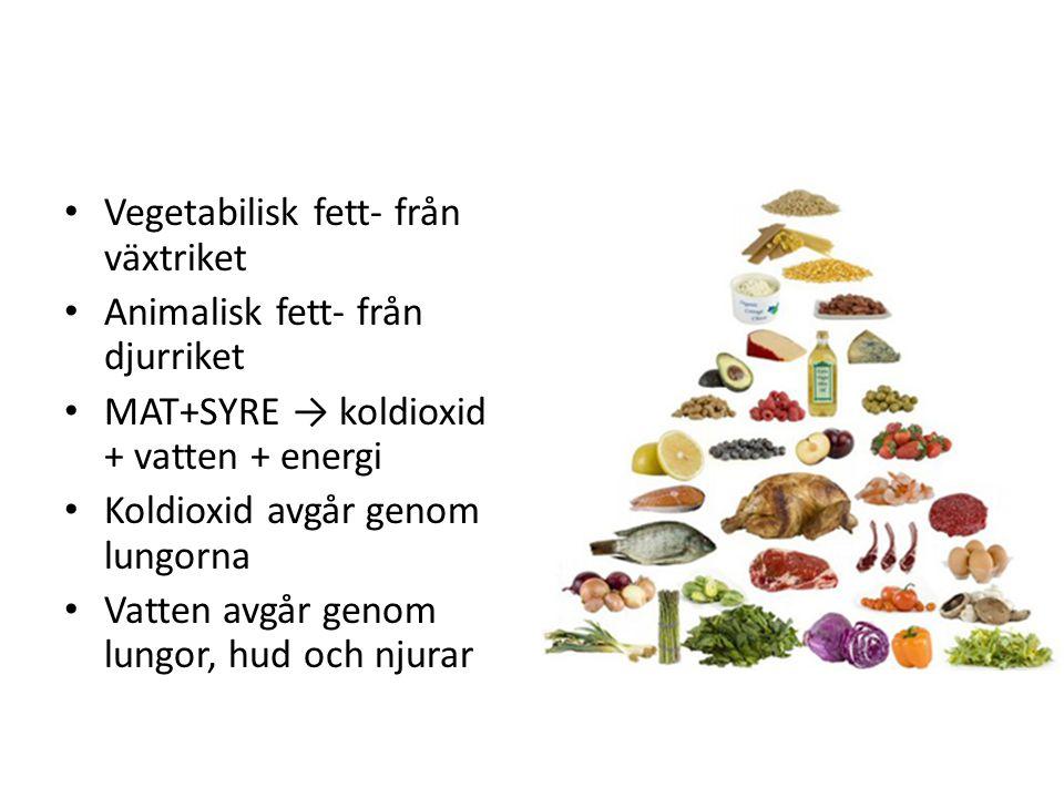 Vegetabilisk fett- från växtriket Animalisk fett- från djurriket MAT+SYRE → koldioxid + vatten + energi Koldioxid avgår genom lungorna Vatten avgår ge