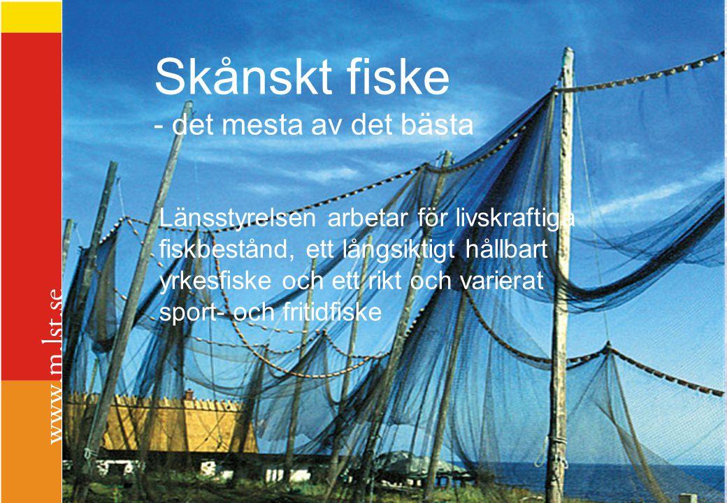 Skånskt fiske - det mesta av det bästa Länsstyrelsen arbetar för livskraftiga fiskbestånd, ett långsiktigt hållbart yrkesfiske och ett rikt och varier