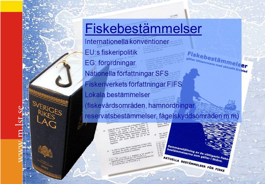 Fiskebestämmelser Internationella konventioner EU:s fiskeripolitik EG: förordningar Nationella författningar SFS Fiskeriverkets författningar FIFS Lok