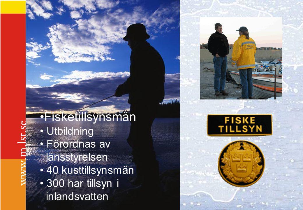 Fisketillsynsmän Utbildning Förordnas av länsstyrelsen 40 kusttillsynsmän 300 har tillsyn i inlandsvatten