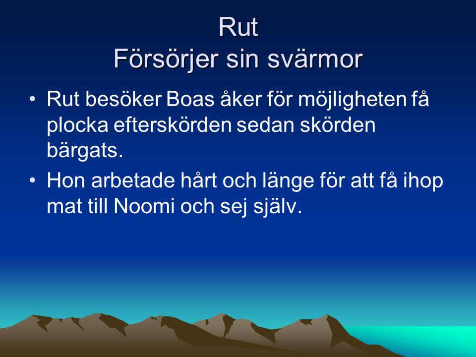 Rut Försörjer sin svärmor Rut besöker Boas åker för möjligheten få plocka efterskörden sedan skörden bärgats.