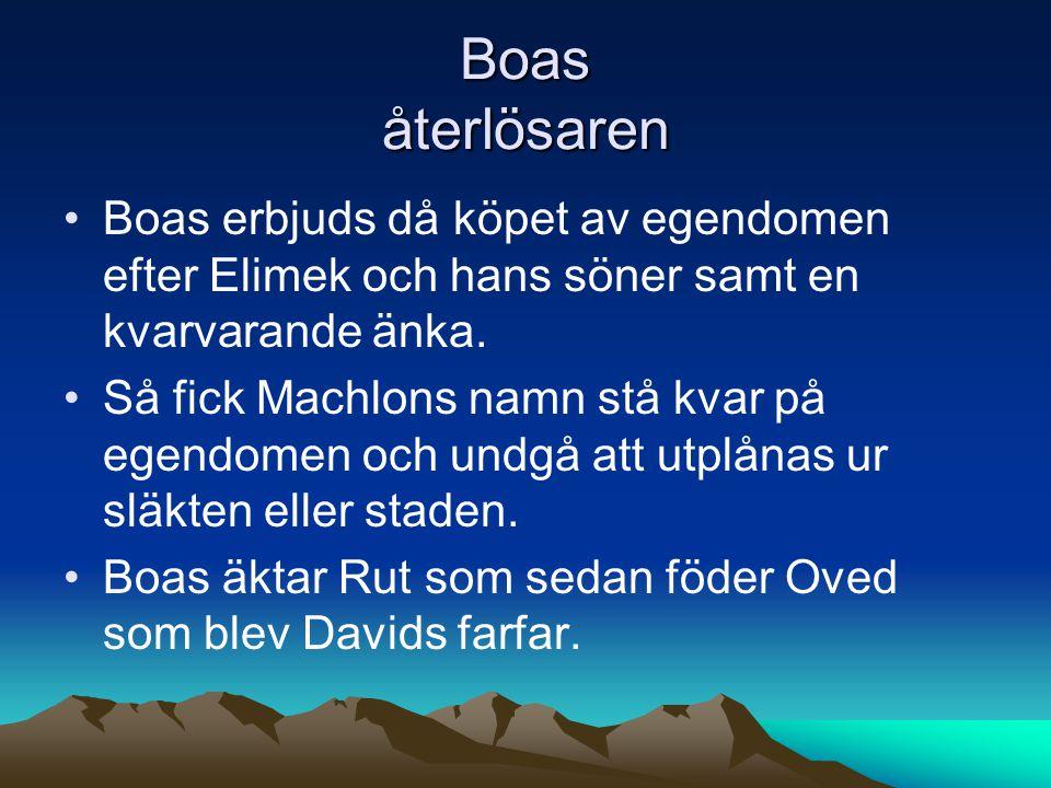 Boas återlösaren Boas erbjuds då köpet av egendomen efter Elimek och hans söner samt en kvarvarande änka.