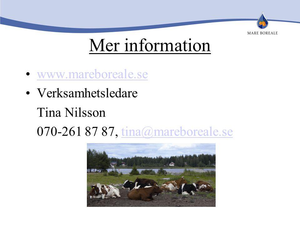 Mer information www.mareboreale.se Verksamhetsledare Tina Nilsson 070-261 87 87, tina@mareboreale.setina@mareboreale.se