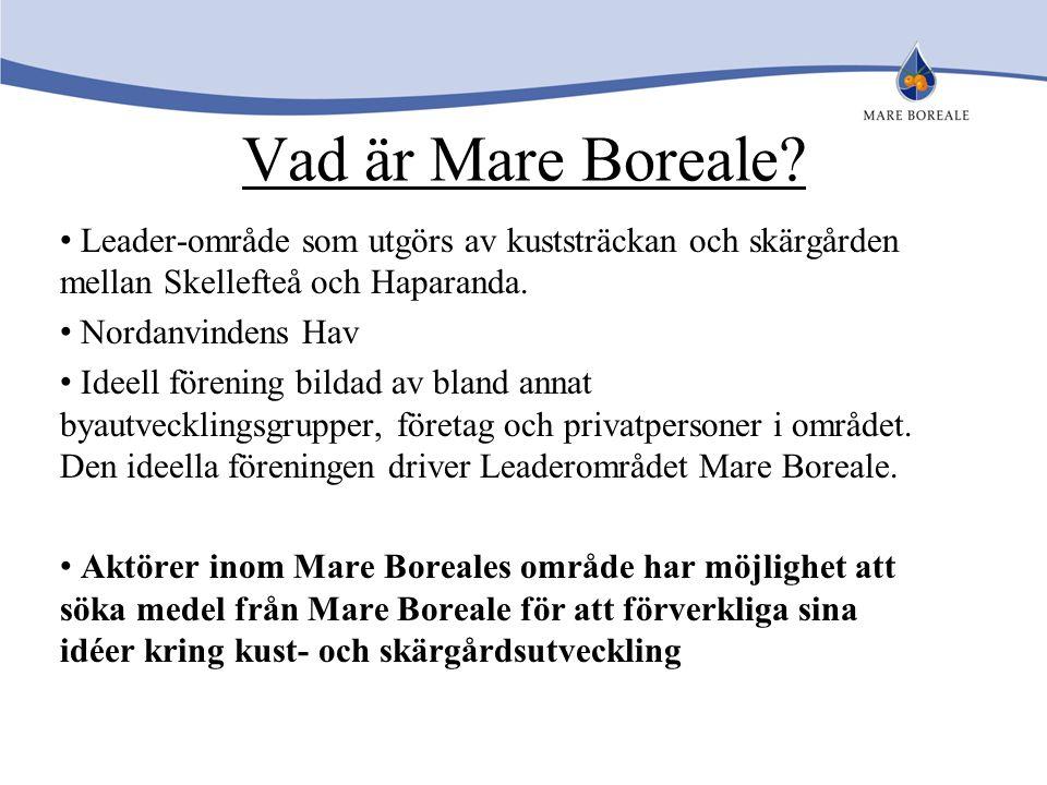 Vad är Mare Boreale? Leader-område som utgörs av kuststräckan och skärgården mellan Skellefteå och Haparanda. Nordanvindens Hav Ideell förening bildad