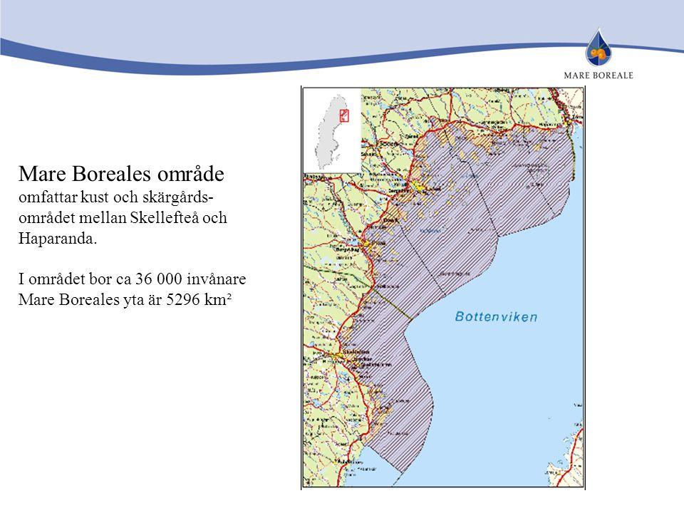 Mare Boreales område omfattar kust och skärgårds- området mellan Skellefteå och Haparanda. I området bor ca 36 000 invånare Mare Boreales yta är 5296