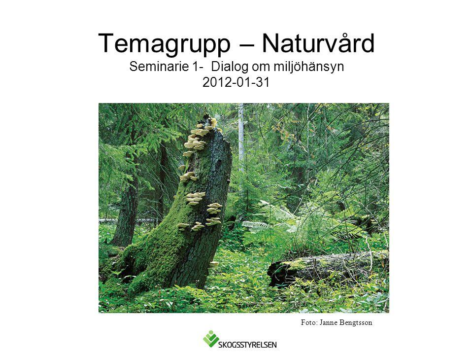 Temagrupp – Naturvård Seminarie 1- Dialog om miljöhänsyn 2012-01-31 Foto: Janne Bengtsson