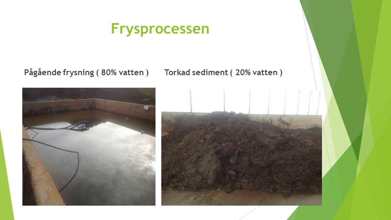 Frysprocessen Pågående frysning ( 80% vatten )Torkad sediment ( 20% vatten )