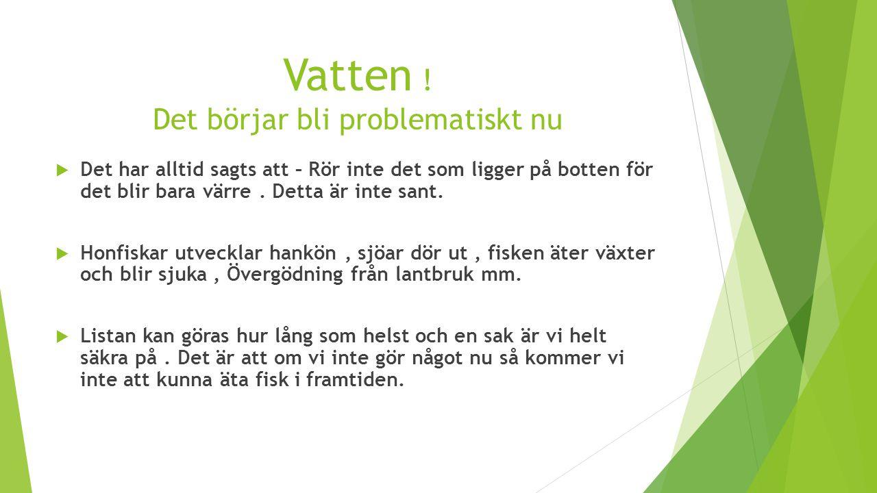 Vatten ! Det börjar bli problematiskt nu  Det har alltid sagts att – Rör inte det som ligger på botten för det blir bara värre. Detta är inte sant. 