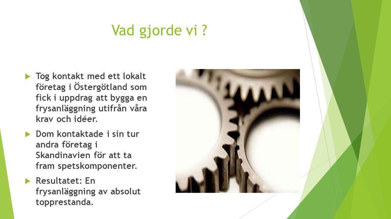 Vad gjorde vi ?  Tog kontakt med ett lokalt företag i Östergötland som fick i uppdrag att bygga en frysanläggning utifrån våra krav och idéer.  Dom