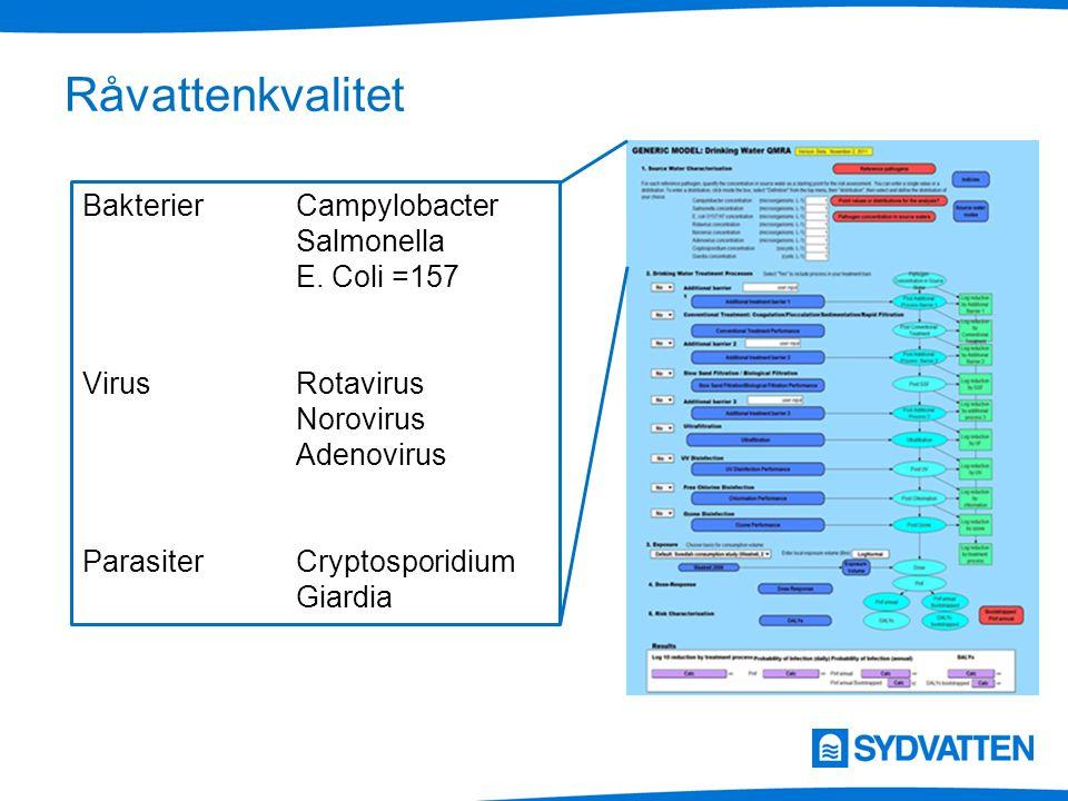 Råvattenkvalitet BakterierCampylobacter Salmonella E. Coli =157 VirusRotavirus Norovirus Adenovirus ParasiterCryptosporidium Giardia