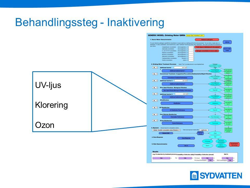 Behandlingssteg - Inaktivering UV-ljus Klorering Ozon