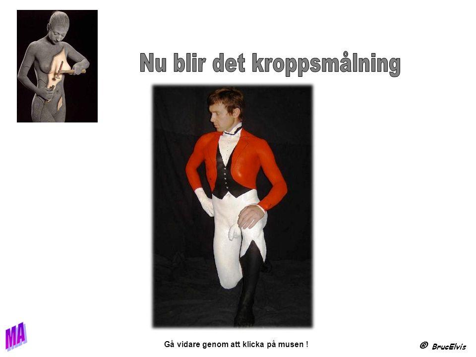 ® BrucElvis Gå vidare genom att klicka på musen . B a R n......
