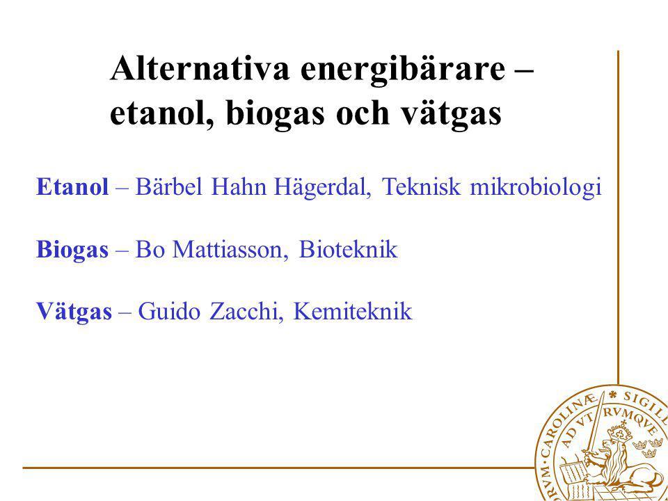 Etanol – Bärbel Hahn Hägerdal, Teknisk mikrobiologi Biogas – Bo Mattiasson, Bioteknik Vätgas – Guido Zacchi, Kemiteknik Alternativa energibärare – etanol, biogas och vätgas