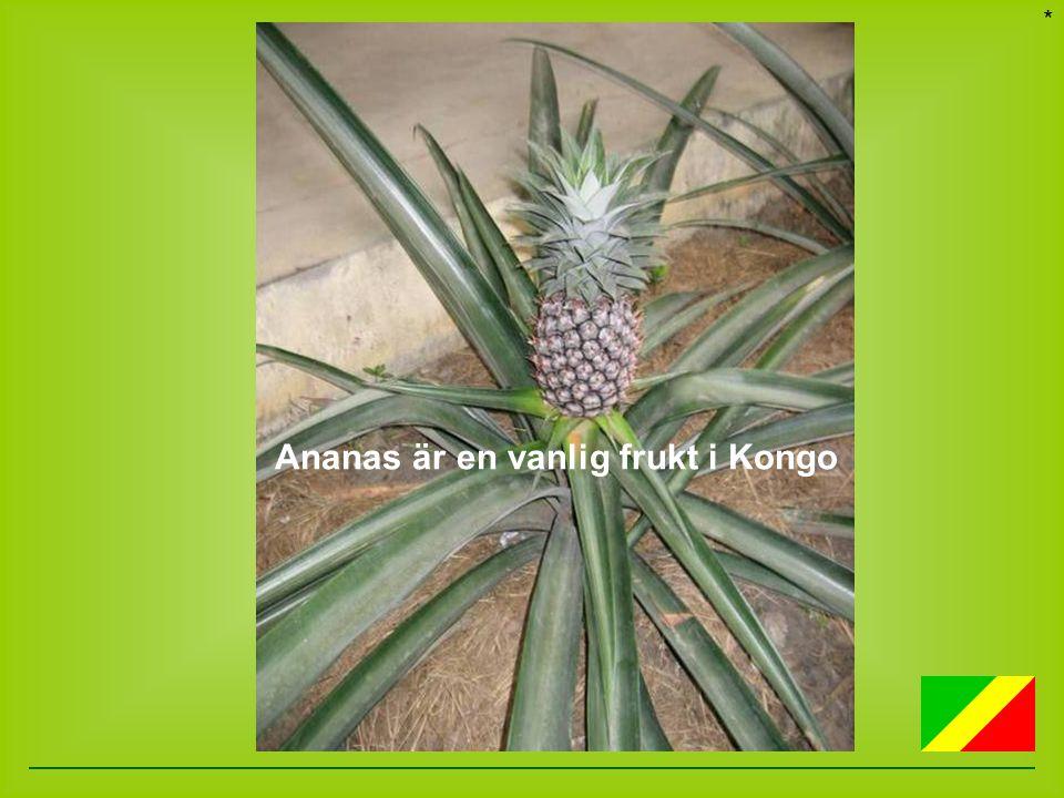 * Ananas är en vanlig frukt i Kongo
