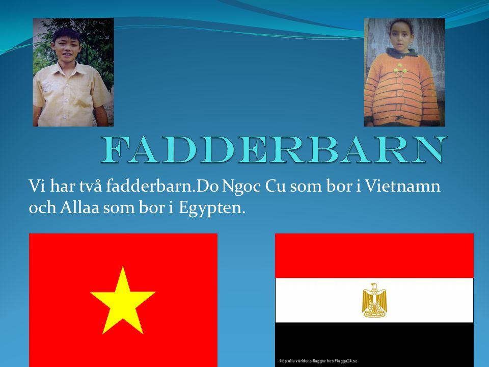 Vi har två fadderbarn.Do Ngoc Cu som bor i Vietnamn och Allaa som bor i Egypten.