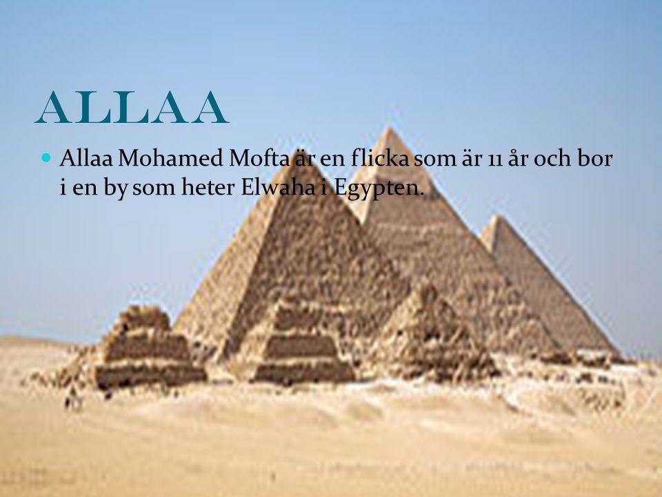 Allaa Allaa Mohamed Mofta är en flicka som är 11 år och bor i en by som heter Elwaha i Egypten.