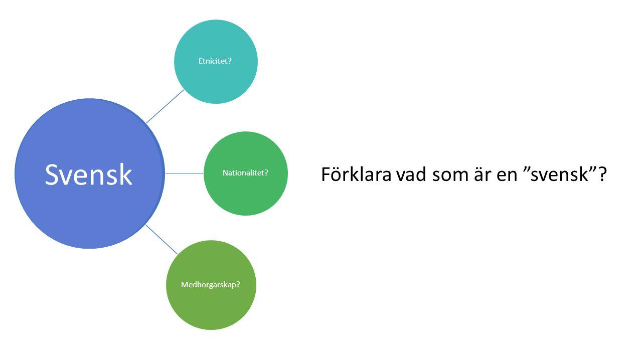 Etnicitet?Nationalitet? Medborgarskap? Svensk Förklara vad som är en svensk ?