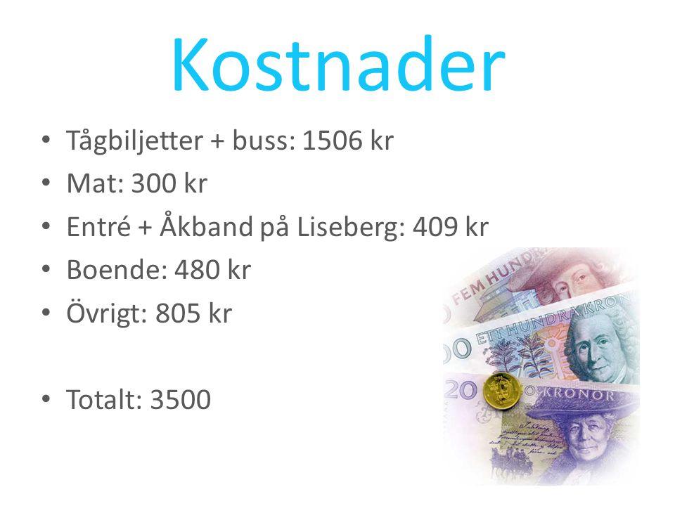 Kostnader Tågbiljetter + buss: 1506 kr Mat: 300 kr Entré + Åkband på Liseberg: 409 kr Boende: 480 kr Övrigt: 805 kr Totalt: 3500