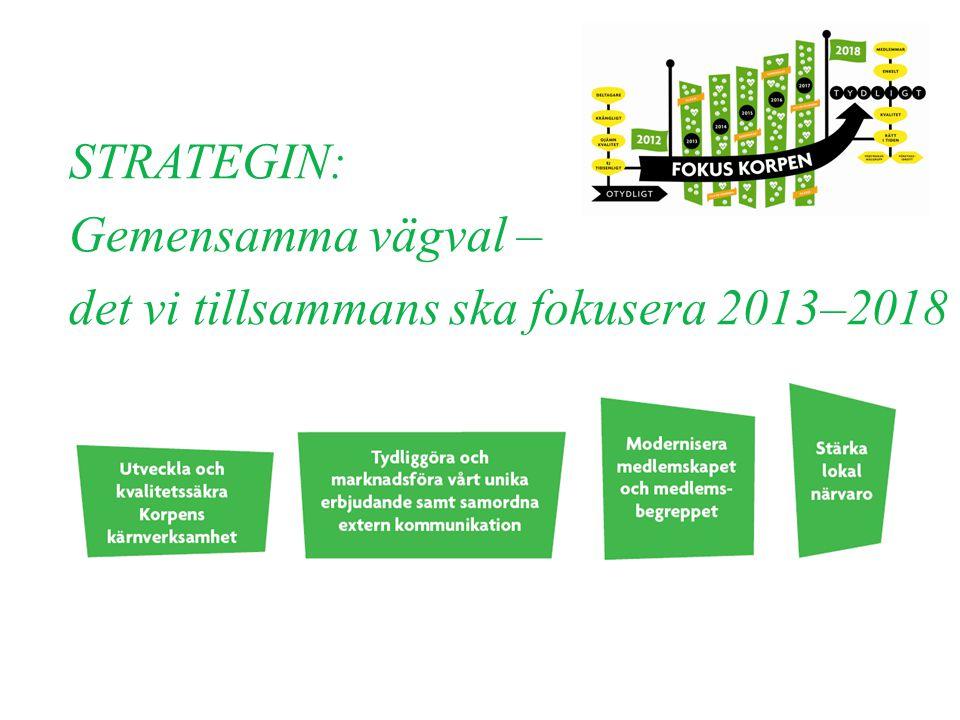 STRATEGIN: Gemensamma vägval – det vi tillsammans ska fokusera 2013–2018