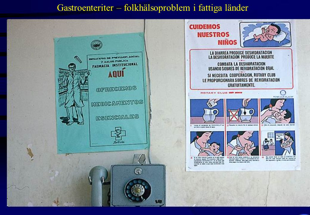 Gastroenteriter – folkhälsoproblem i fattiga länder