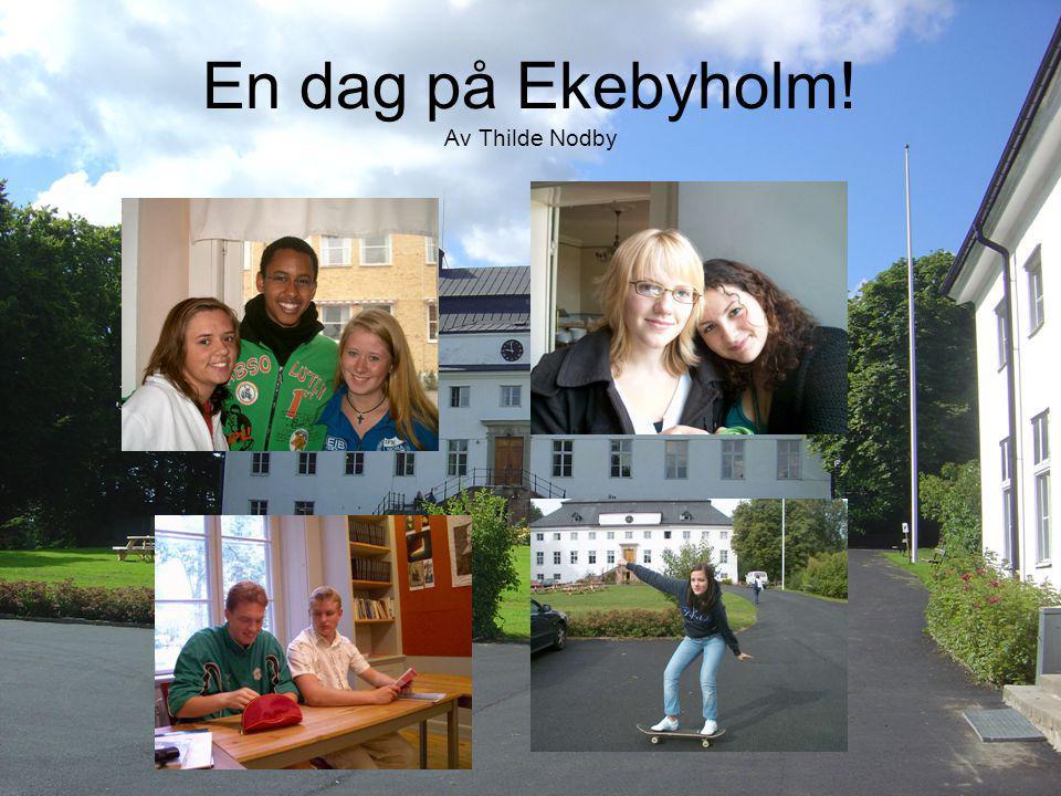 En dag på Ekebyholm! Av Thilde Nodby