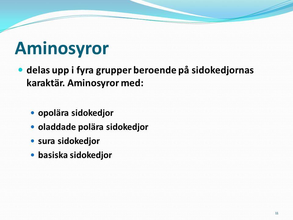11 Aminosyror delas upp i fyra grupper beroende på sidokedjornas karaktär. Aminosyror med: opolära sidokedjor oladdade polära sidokedjor sura sidokedj