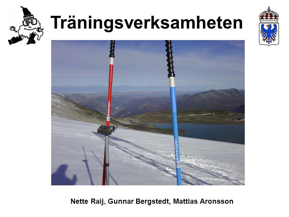 Träningsverksamheten Nette Raij, Gunnar Bergstedt, Mattias Aronsson