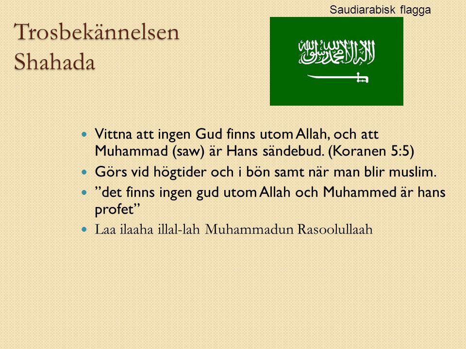 Trosbekännelsen Shahada Vittna att ingen Gud finns utom Allah, och att Muhammad (saw) är Hans sändebud.