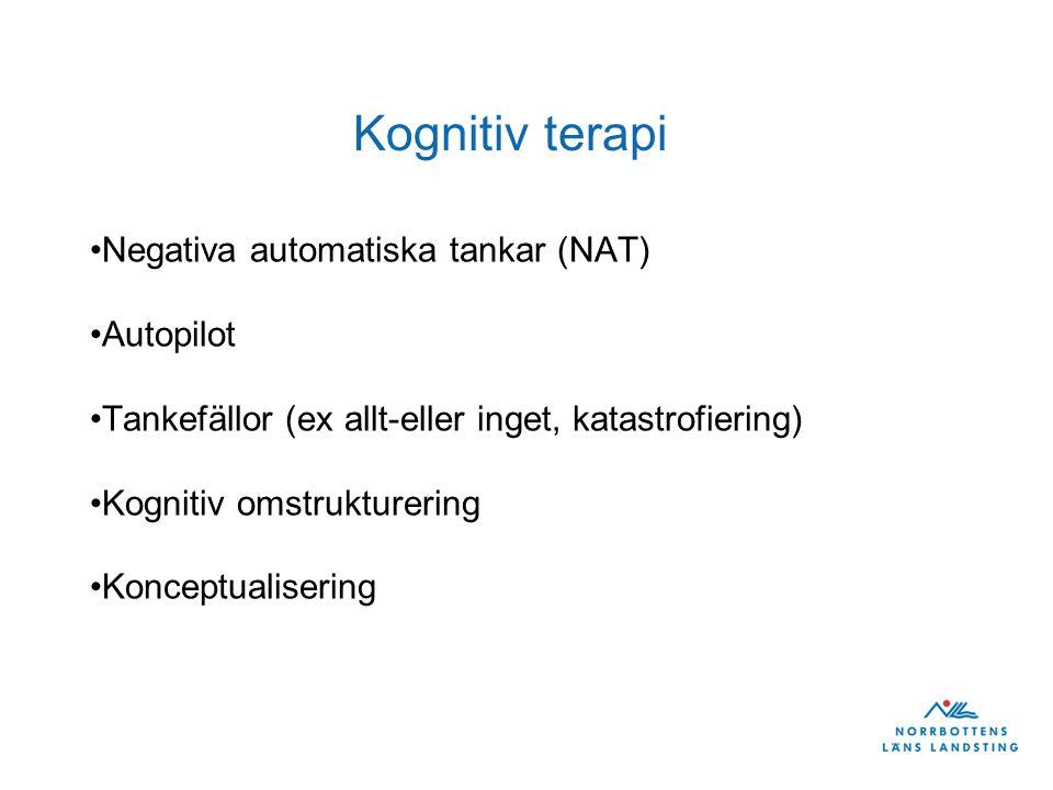Grundantagande Livsregler Kompensatoriska strategier (undvikande och säkerhetsbeteende) Automatiska tankar
