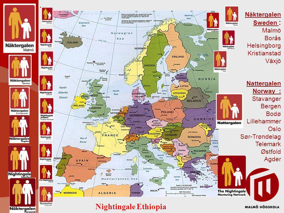 Näktergalen Sweden : Malmö Borås Helsingborg Kristianstad Växjö Nattergalen Norway : Stavanger Bergen Bodø Lillehammer Oslo Sør-Trøndelag Telemark Østfold Agder.