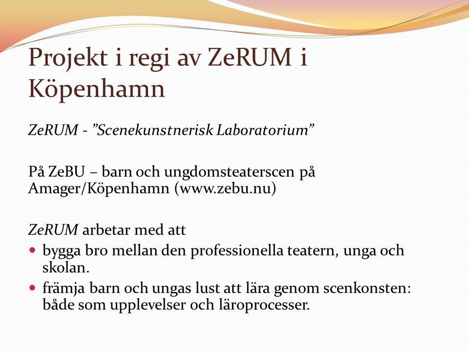 "Projekt i regi av ZeRUM i Köpenhamn ZeRUM - ""Scenekunstnerisk Laboratorium"" På ZeBU – barn och ungdomsteaterscen på Amager/Köpenhamn (www.zebu.nu) ZeR"