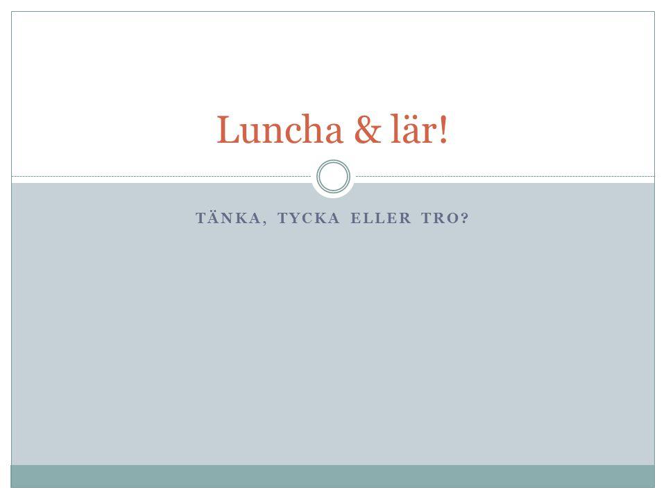 TÄNKA, TYCKA ELLER TRO? Luncha & lär!