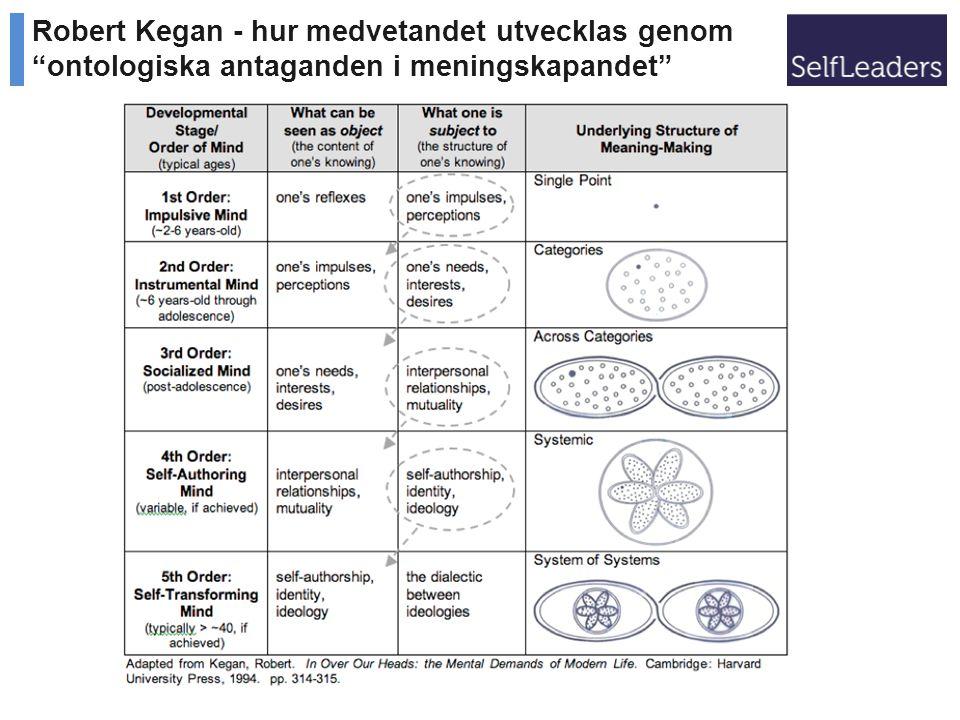 Robert Kegan - hur medvetandet utvecklas genom ontologiska antaganden i meningskapandet