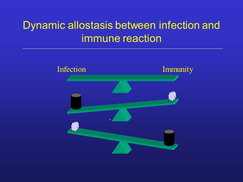 Dynamic allostasis between infection and immune reaction InfectionImmunity