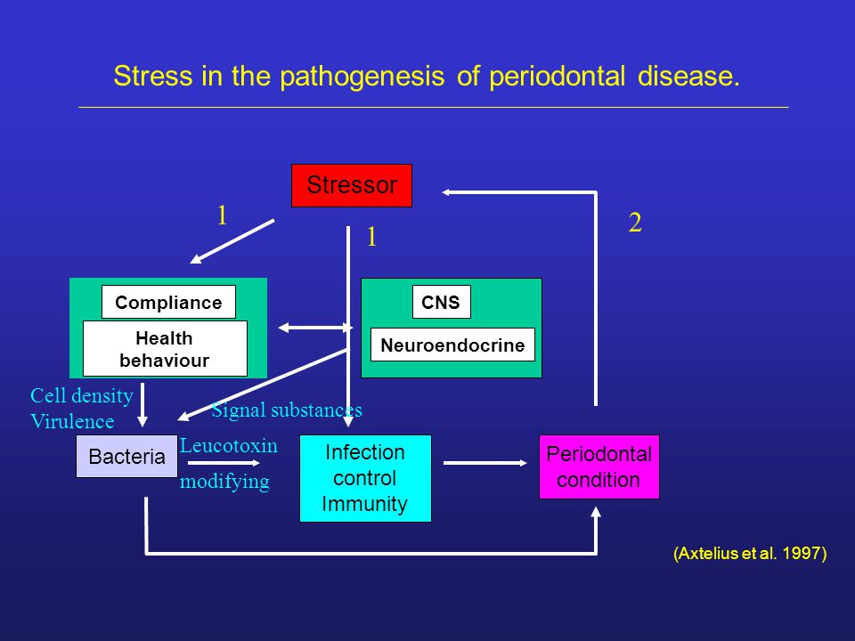 Stressor Compliance Health behaviour Neuroendocrine CNS Bacteria Infection control Immunity Periodontal condition Stress in the pathogenesis of period