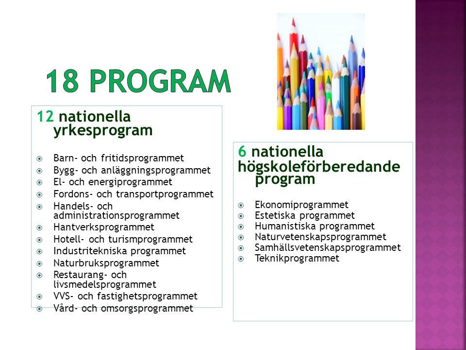 12 nationella yrkesprogram  Barn- och fritidsprogrammet  Bygg- och anläggningsprogrammet  El- och energiprogrammet  Fordons- och transportprogramm