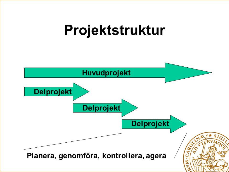 Projektstruktur Huvudprojekt Delprojekt Planera, genomföra, kontrollera, agera
