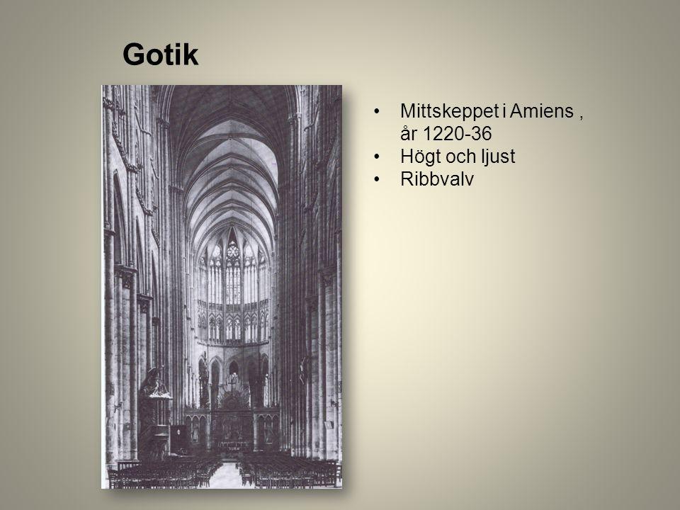 Gotik Mittskeppet i Amiens, år 1220-36 Högt och ljust Ribbvalv